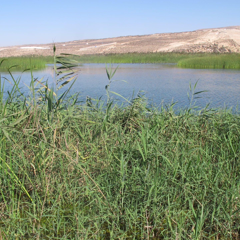 Parque Nacional de Souss Massa – Marruecos