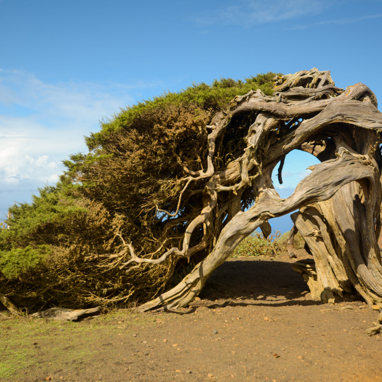 La isla de El Hierro en 25 fotografías.