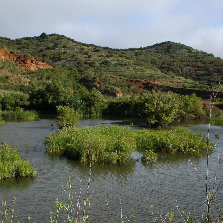 Descubre las charcas de Erjos en Tenerife