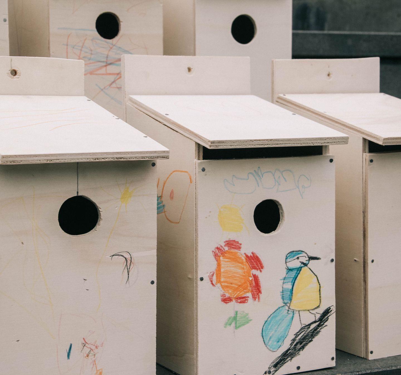 Operación Gorrión. Tiempo de cajas nido